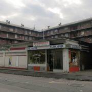 Cocci-Rue