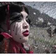 Emi_Butterfly_2