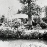 Monet au bassin - Eté 1904 coll. Philippe Piguet